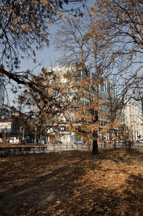 Fot: Maciej Landsberg, Skwer AK Ruczaj w Warszawie, z cyklu: Architektura XXI wieku. Coś, które nadchodzi, 2011